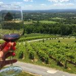 5 Vinícolas incríveis pertinho de Washington DC