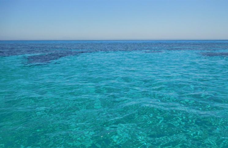 passeio de barco em favignana (6)