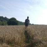 Hiking na Inglaterra: caminhando pela trilha circular de Wadhurst