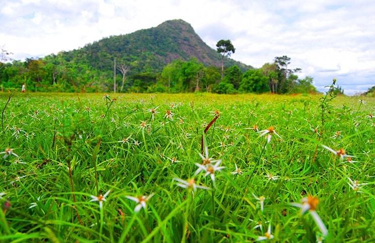 Parque Nacional e Histórico do Monte Pascoal