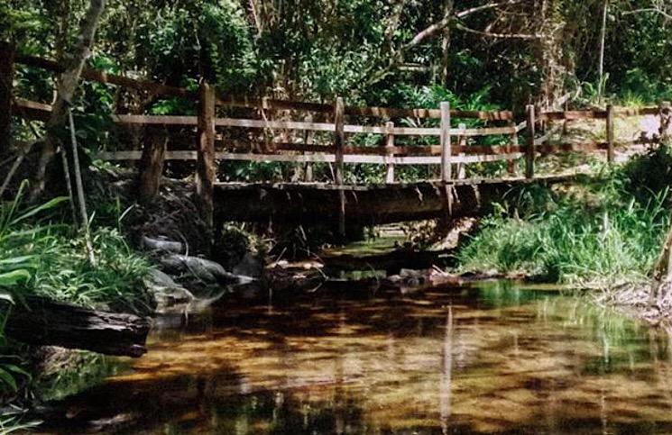 Parque Nacional do Pau Brasil Porto Seguro